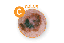 C-color
